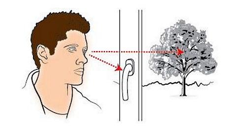 Упражнения для глаз, чтобы улучшить зрение. От близорукости, дальнозоркости для взрослых и детей