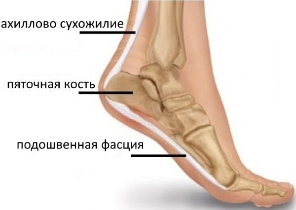 Что делать при боли в пятке при ходьбе