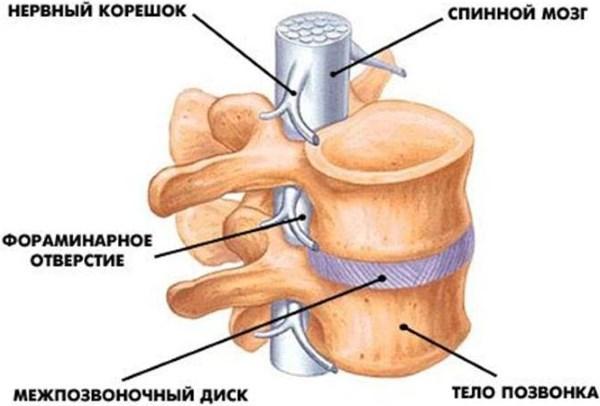 Карбокситерапия - что это за процедура, особенности газовых уколов для спины и суставов