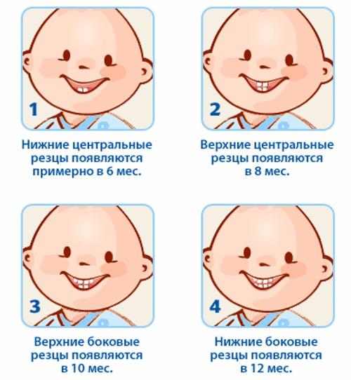 Рвота у ребенка без температуры и поноса и с ними, если тошнота и боль в животе. Что делать родителям