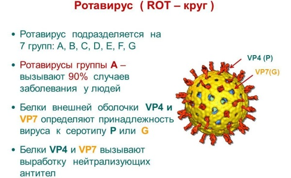 Кишечная инфекция симптомы у детей. Причины, симптомы и лечение острой ротавирусной инфекции