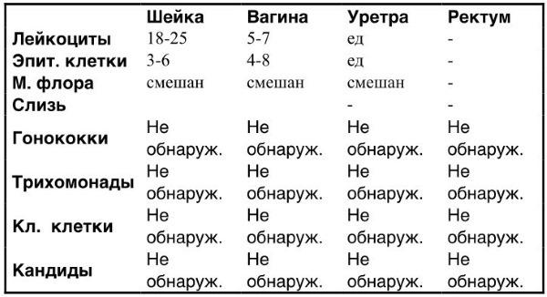 Лейкоциты в мазке - норма у женщин, таблица. Причины повышенного содержания, расшифровка анализа