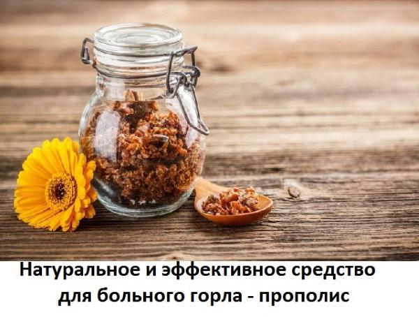 Прополис. Польза, лечебные свойства, как принимать настойку, рецепты применения мази, масла для женщин, мужчин и детей, противопоказания
