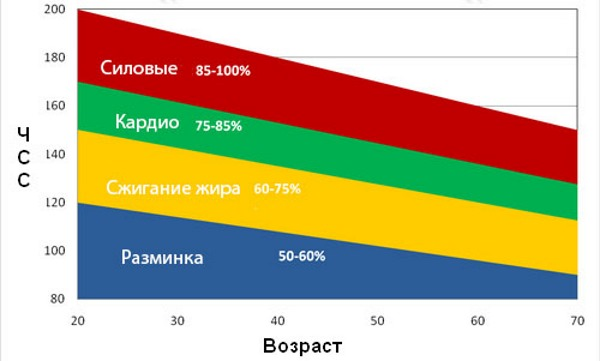Пульс человека. Норма по возрасту в 20, 30-40, 50-60 лет, без нагрузки, при нагрузке. Как нормализовать пульс при сбоях