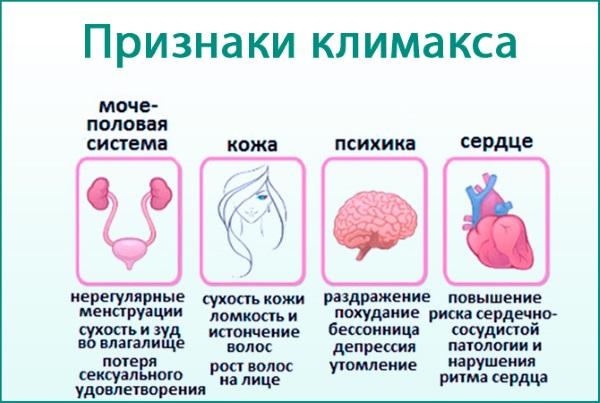 Гормональный сбой у женщин: симптомы, признаки и лечение при задержке месячных, до или после менопаузы. Медикаментозная терапия и народные средства