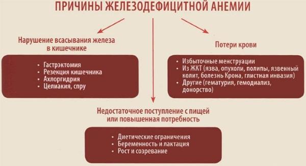 Низкий гемоглобин в крови. Причины, последствия, как повысить у ребенка, взрослых женщин и мужчин, при беременности. Препараты, народные средства, питание