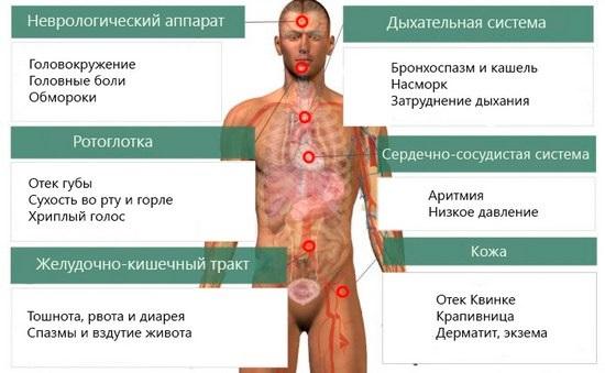 Аллергические высыпания на коже у детей. Фото, симптомы и лечение народными средствами, препараты из аптеки, мази