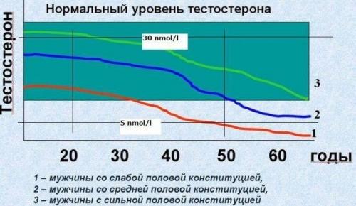 Как повысить тестостерон у мужчин естественными способами, народными средствами, препараты в аптеке, норма гормона в зависимости от возраста