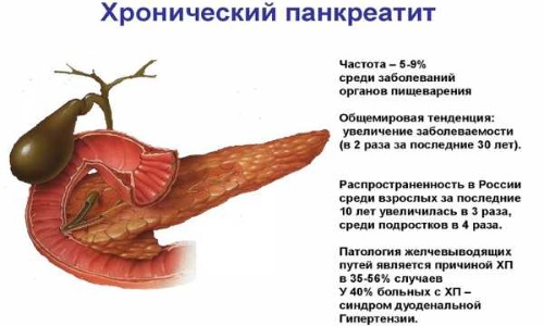 Метеоризм у взрослых: причины и лечение народными средствами, препараты, диета