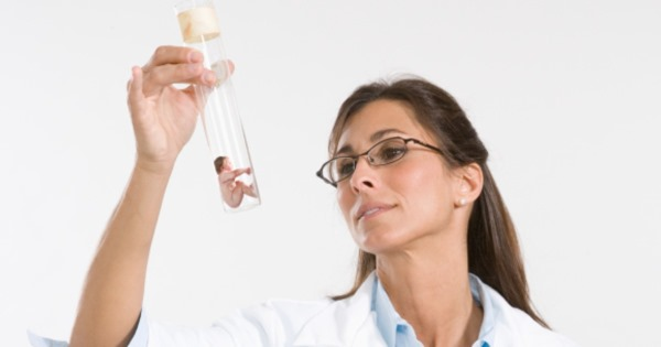Антимюллеров гормон у женщин. Норма АМГ по возрасту, таблица. Уровень гормона при беременности, для ЭКО, как сдавать анализ, как повысить пониженный показатель