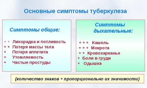 Гинкго Билоба. Инструкция по применению, цена, аналоги