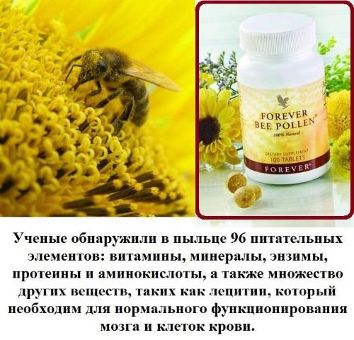 Пыльца пчелиная. Полезные свойства, как принимать, противопоказания, вред,  как употреблять женщинам, мужчинам. Выбор и хранение