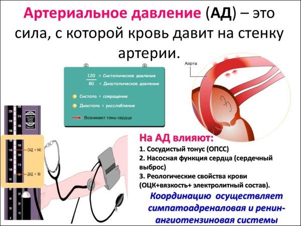Норма артериального давления у детей 7-8 лет таблица по возрасту
