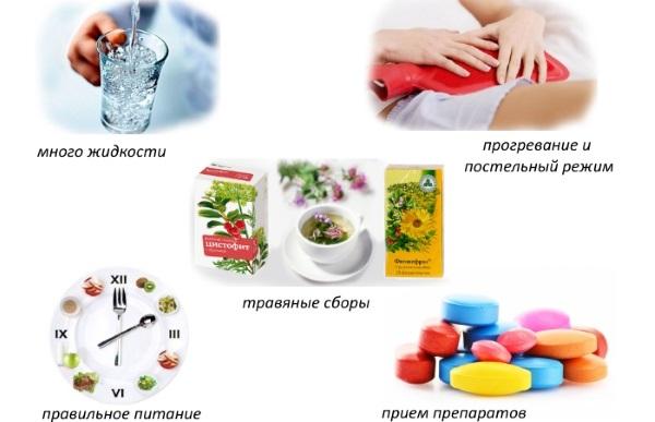 Диета при цистите у женщин, детей, при беременности Список запрещенных и разрешенных продуктов, меню, рецепты