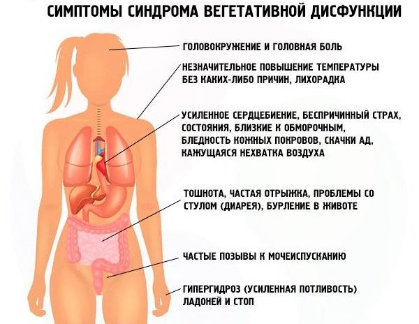 Причины головокружения и тошноты у женщин при беременности, климаксе, остеохондрозе, давлении, в пожилом возрасте