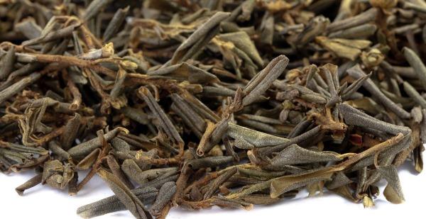 Трава Саган Дайля: полезные свойства и применение
