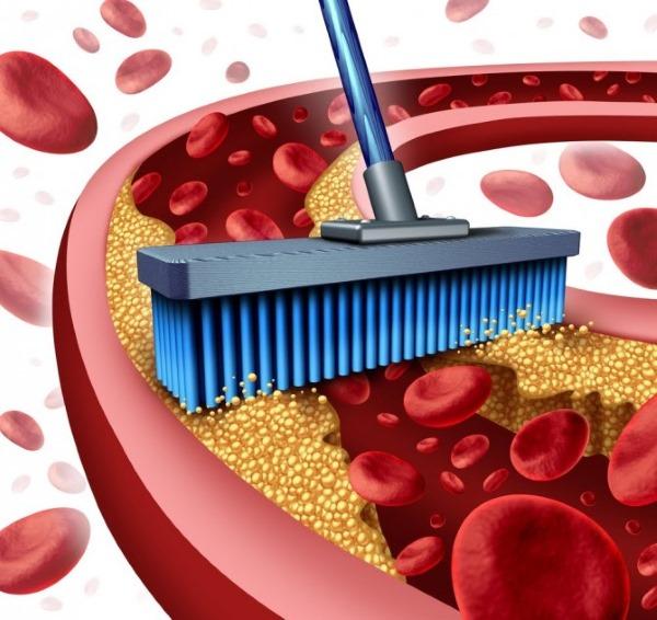 Статины от холестерина: польза и вред, показания и противопоказания, эффективные препараты, инструкция по применению
