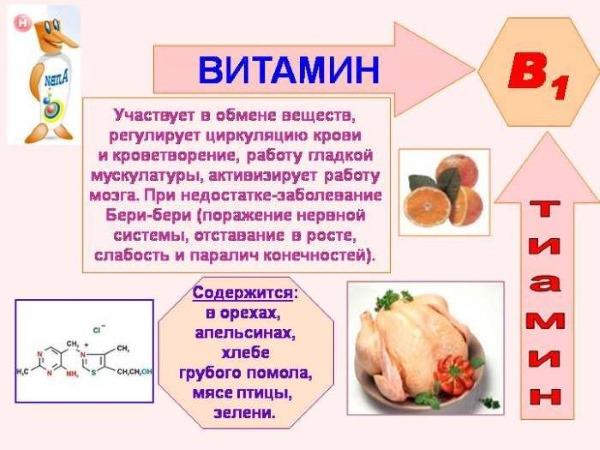 Витамин B1 в ампулах. Свойства, применение в косметологии. Как использовать для кожи и волос