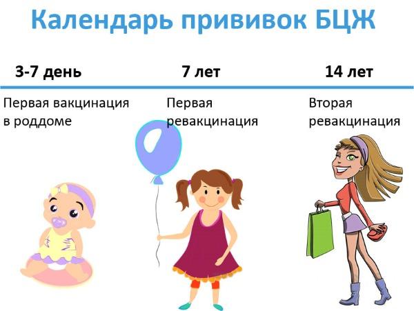 БЦЖ прививка: от чего, что это такое, когда делают новорожденным, как протекает реакция, сколько раз делается, осложнения, противопоказания