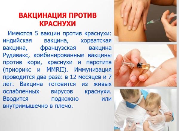 Краснуха у взрослых. Симптомы, фото сыпи, стадии, пути передачи, лечение. Инкубационный период, прививки