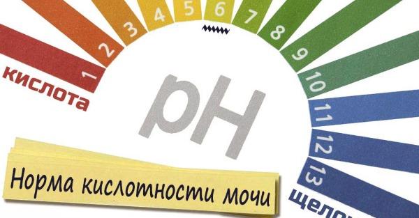 Ph мочи: норма у женщин, мужчин, ребенка, при беременности. Анализ. Тест полоски для определения уровня в домашних условиях