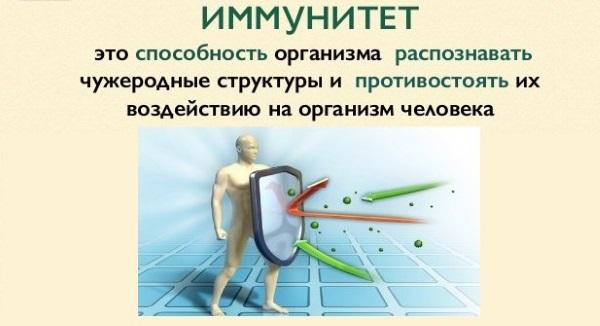 Укрепление иммунитета у взрослых. Иммуностимулирующие препараты, народные средства, витамины