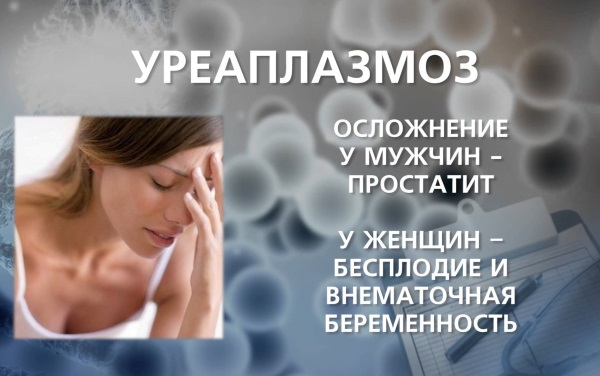Уреаплазма у женщин. Причины, симптомы и лечение при беременности. Норма в анализах мазка, крови. Препараты