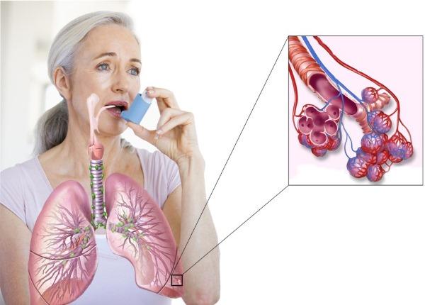 Фиброгастродуоденоскопия. Что это такое ФГДС, как делается, подготовка пациента к процедуре, расшифровка результатов