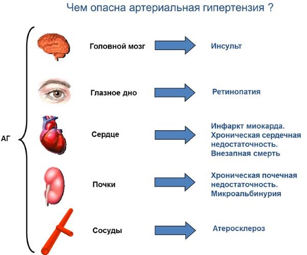 Проблемы с сосудами. Симптомы, лечение, диагностика вен головного мозга, шеи, ног, конечностей