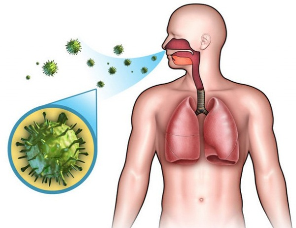 Симптомы и лечение скарлатины у детей, как выглядит горло, язык, сыпь. Стадии, профилактика, инкубационный период, последствия