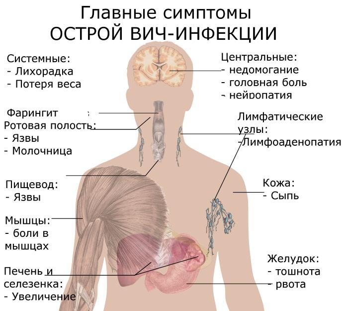 Симптомы венерологических заболеваний у женщин. Обследование и диагностика, инкубационный период, лечение