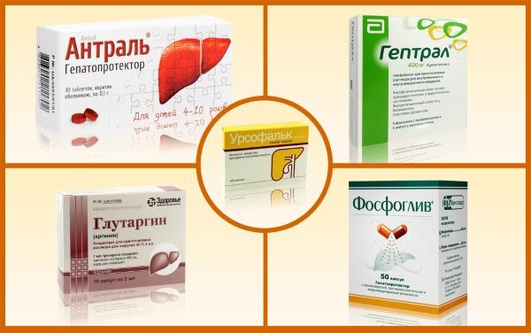 Загиб желчного пузыря. Симптомы и лечение народными средствами, препараты, диета. Причины, последствия