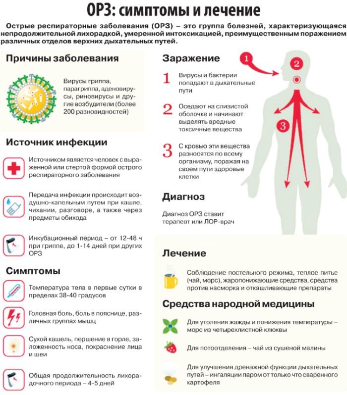 Аденоидит у детей. Симптомы и лечение, стадии: острый, подострый, хронический. Клинические рекомендации
