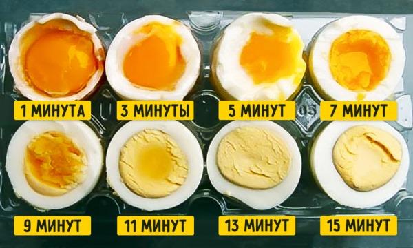 Диета при повышенном холестерине у женщин в крови. Стол 10, меню на 7 дней. Запрещенные, разрешенные продукты питания