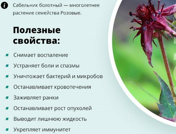 Гиперплазия эндометрия в менопаузе: железистая, очаговая, атипическая, простая, сложная. Что это, признаки, лечение