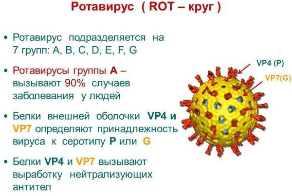 Лечение ротовирусных инфекций у взрослых. Препараты антибиотики, народные средства