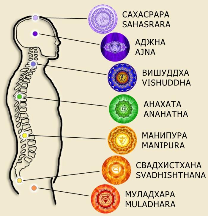 Лууле Виилма. Причины болезней, аффирмации. Заболевания позвоночника и суставов, пищеварительной, нервной системы, псориаз