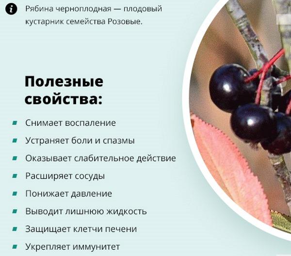 Народные средства от повышенного давления. Рецепты: калина, рябина, имбирь, магния сульфат, луковая шелуха, свекольный сок, гвоздика, шиповник, лавровый лист, клюква. Питание, гимнастика
