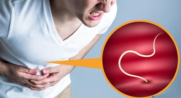 Симптомы наличия паразитов в организме человека: как определить