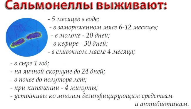Сальмонеллез у детей. Симптомы, признаки, лечение, инкубационный период, последствия. Антибиотики, рекомендации врачей
