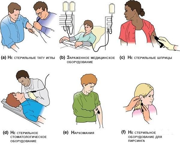 Золотистый стафилококк. Симптомы у взрослых, лечение народными средствами, бактериофагами, антибиотиками