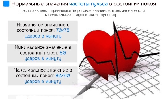Частота сердечных сокращений. Норма у взрослых, детей. Как измерить, препараты, снижающие и повышающие частоту