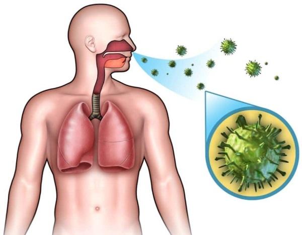 Инфекционный мононуклеоз у взрослых. Симптомы, фото, лечение, рекомендации