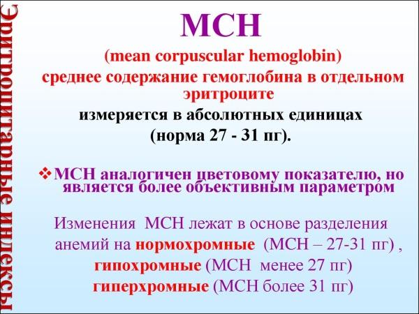 MCH в анализе крови. Что это такое, расшифровка, норма, что значит, если показатель понижен, повышен