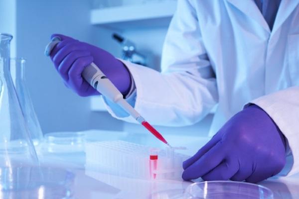 Норма ферритина в крови у женщин. Что показывает анализ при беременности, как повысить, понизить