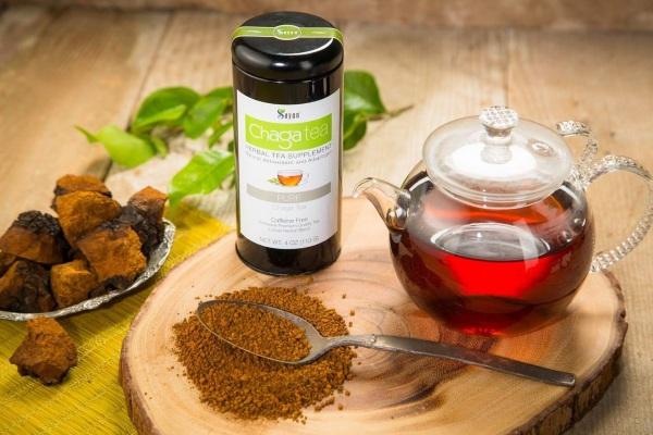 chaga lechebnye svoystva 9 - Chaga birch mushroom useful properties and application
