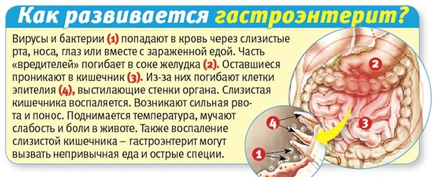 Иерсиниоз. Симптомы и лечение у детей и взрослых. Клинические рекомендации