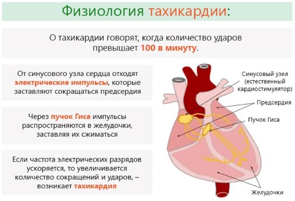 Креатинкиназа в крови. Причины повышенного уровня, симптомы и лечение