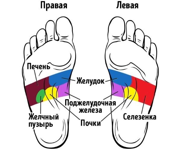 Акупунктурные точки на теле человека. Атлас, схема для самолечения, похудения. Как делать правильный массаж