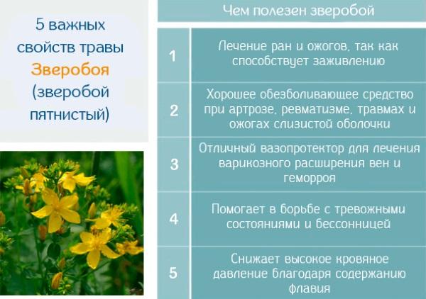 Крапивница на нервной почве. Симптомы и лечение у детей и взрослых